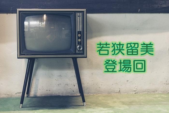 【名探偵コナン】若狭留美の登場回一覧!アニメと映画!DVDの収録まとめ!