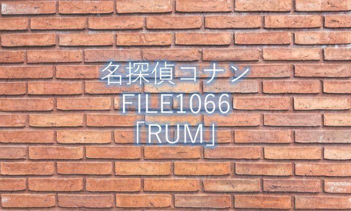 【名探偵コナン】最新話1066話「RUM」ネタバレ感想と考察!